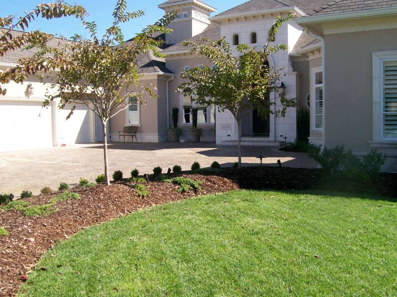 landscaping projects Organic landscaping since 2008, nyu landscaping has adhered to nofa standards for organic landcare, our region premier set of standards and guidelines assuring.